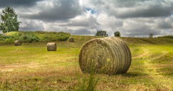 COVID-19: How might farmland values be affected?