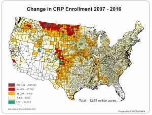 CRP Decline Graphic