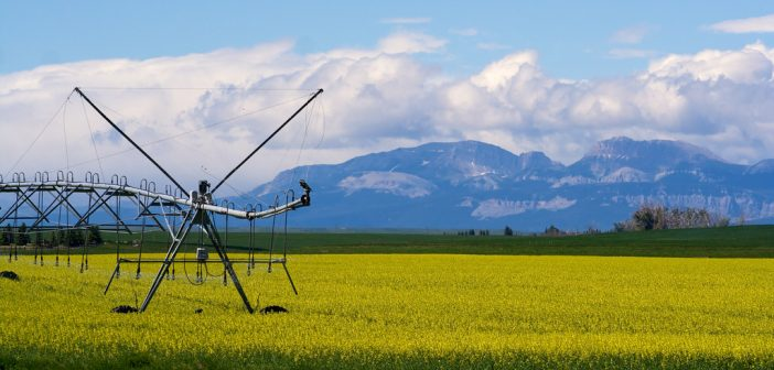 (Podcast) Episode 024: Agricultural Land Values in the northern U.S.