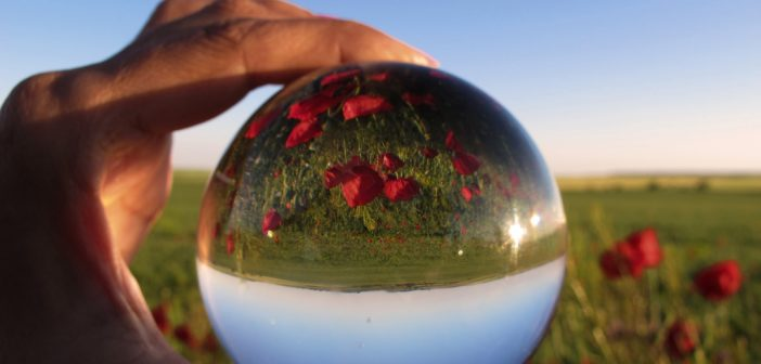Crowdsourcing the crystal ball: Montana farmers' predictions for the ag economy