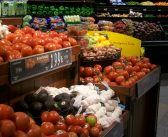 Food Insecurity in the Northern Great Plains
