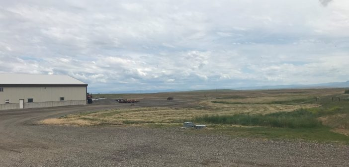 What is the Role of Hutterite Communities in Montana Agriculture?