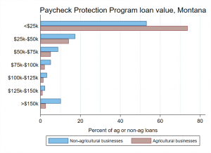 Paycheck Protection Program loan value distribution, agricultural and non-agricultural businesses